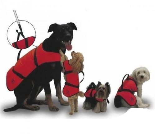 LIFEJACKETS FOR DOGS. PLASTIMO